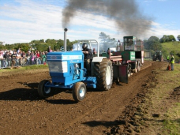 p_tractorpullingpic_1
